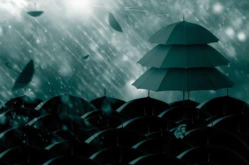 Rain Umbrellas
